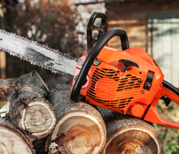 Top 10+ Husqvarna Chainsaws You Need to Know About
