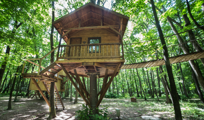wooden treehouse in forest